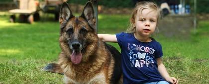 Vereniging van fokkers en liefhebbers van duitse herdershonden